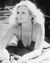 This is an image of 170058 Lynda Day George Photograph & Poster