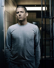 This is an image of 272559 Wentworth Miller Photograph & Poster