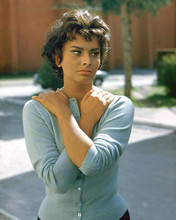 This is an image of 272803 Sophia Loren Photograph & Poster
