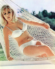 This is an image of 277215 Stella Stevens Photograph & Poster