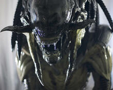 This is an image of 277820 Aliens Vs Predator Requiem Photograph & Poster