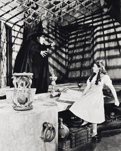 This is an image of 169661 The Wizard of Oz Photograph & Poster