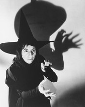 This is an image of 171344 The Wizard of Oz Photograph & Poster