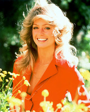 This is an image of 252382 Farrah Fawcett Photograph & Poster
