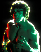 This is an image of 282116 Lou Ferrigno Photograph & Poster