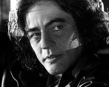 This is an image of 192668 Benicio Del Toro Photograph & Poster