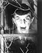 This is an image of 192946 Dark Shadows Photograph & Poster