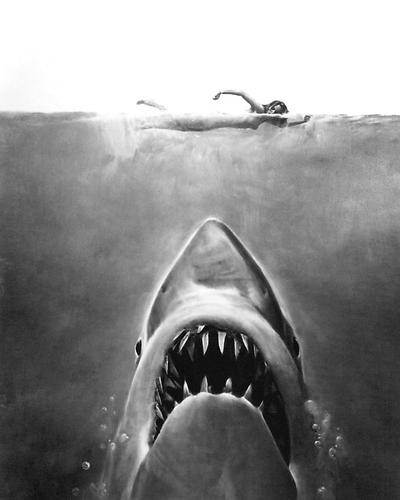 This is an image of 192947 Jaws Photograph & Poster