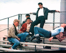 This is an image of 283002 Grease Photograph & Poster
