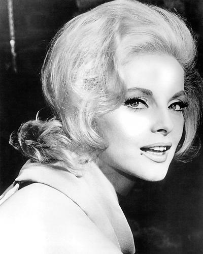 This is an image of 193186 Virna Lisi Photograph & Poster