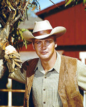 This is an image of 283476 Lee Majors Photograph & Poster