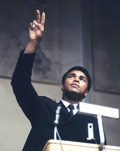 This is an image of 283147 Muhammad Ali Photograph & Poster