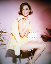 This is an image of 232735 Shelley Fabares Photograph & Poster