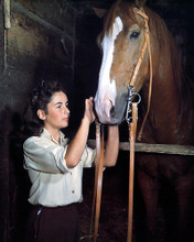 This is an image of 225916 Elizabeth Taylor Photograph & Poster