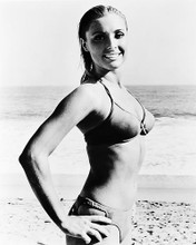 This is an image of 167924 Sharon Tate Photograph & Poster