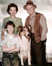 This is an image of 283953 Jon Provost and Lassie Photograph & Poster
