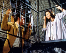 This is an image of 283993 West Side Story Photograph & Poster