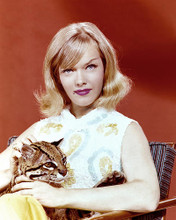 This is an image of 275621 Anne Francis Photograph & Poster