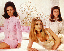 This is an image of 282226 Valley of the Dolls Photograph & Poster