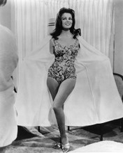 This is an image of Prints & Posters of Pamela Tiffin 104731