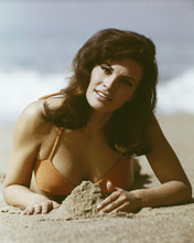 This is an image of Prints & Posters of Raquel Welch 202547
