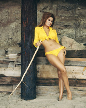 This is an image of Prints & Posters of Raquel Welch 202550