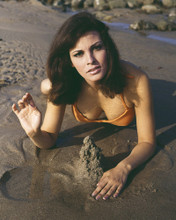 This is an image of Prints & Posters of Raquel Welch 202562