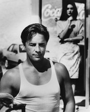 This is an image of Prints & Posters of Don Johnson 104591