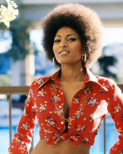 This is an image of Prints & Posters of Pam Grier 202640