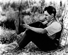 This is an image of Prints & Posters of Charles Chaplin 105438