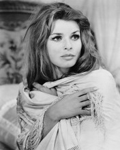 This is an image of Photograph & Poster of Senta Berger 102783