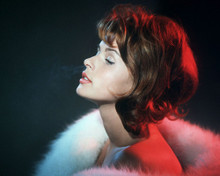 This is an image of Photograph & Poster of Senta Berger 298274