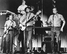 This is an image of Photograph & Poster of The Beach Boys 191788