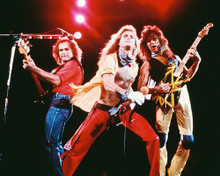 This is an image of Photograph & Poster of Van Halen 248360
