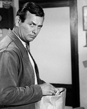 This is an image of Photograph & Poster of David Janssen 102936