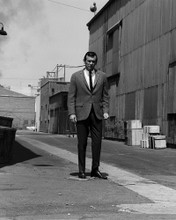 This is an image of Photograph & Poster of David Janssen 102941