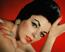 This is an image of Photograph & Poster of Joan Collins 298354