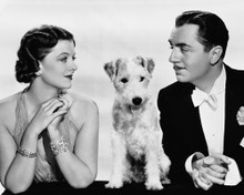 This is an image of Photograph & Poster of After the Thin Man 103035
