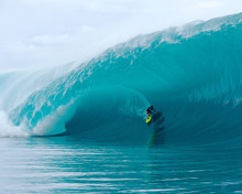 This is an image of Photograph & Poster of Point Break 298454