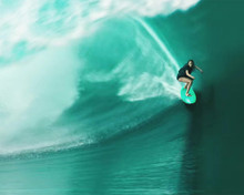 This is an image of Photograph & Poster of Point Break 298490