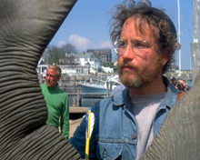 This is an image of Photograph & Poster of Jaws 298576
