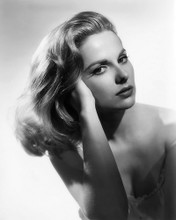 This is an image of Photograph & Poster of Martha Hyer 103107