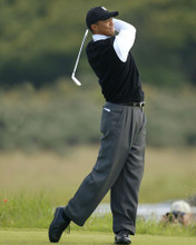 This is an image of Prints & Posters of Tiger Woods 299372