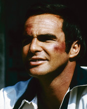 This is an image of Prints & Posters of Burt Reynolds 299687