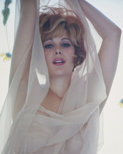 This is an image of Prints & Posters of Jill St. John 299690