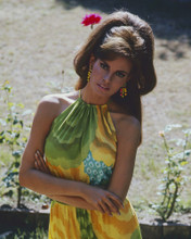 This is an image of Prints & Posters of Raquel Welch 299719