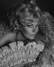This is an image of Prints & Posters of Kim Novak 103681