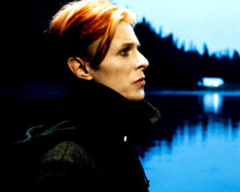 This is an image of Prints & Posters of David Bowie 201308