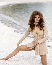 This is an image of Prints & Posters of Raquel Welch 201422