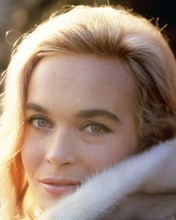This is an image of Prints & Posters of Shirley Eaton 201550